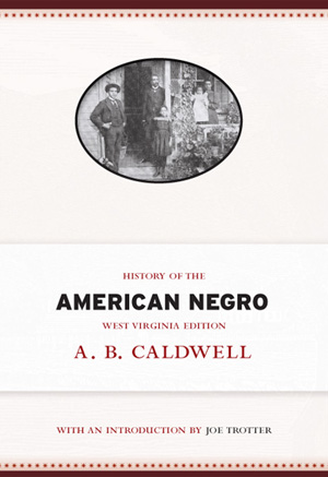History of the American Negro