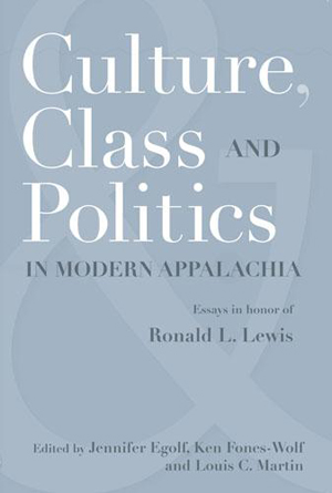 Culture, Class, and Politics